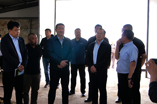 霍照良在阿巴嘎旗调研督导牧区现代化试点建设工作